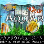 アートアクアリウムミュージアム・大阪に行って来ました 2014 SPRING
